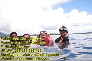 tour karimunjawa happy fun trip